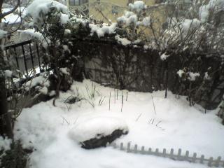 『午前中に雪かきしたのに……』 by JINMA